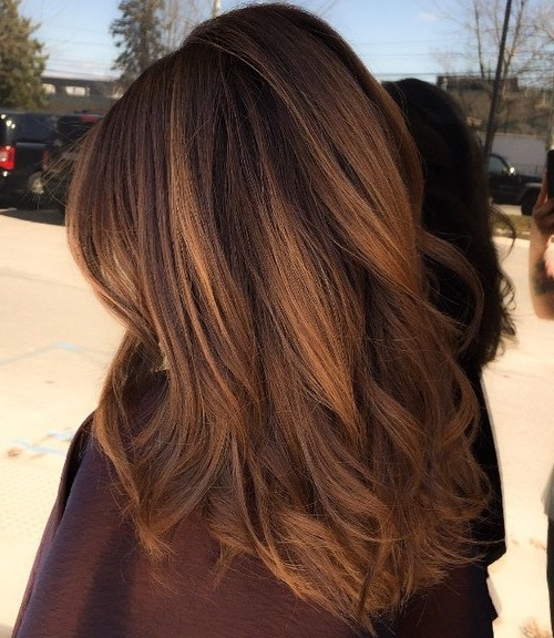 50 Gorgeous Chestnut Brown Hair Color Ideas In 2019 Hair